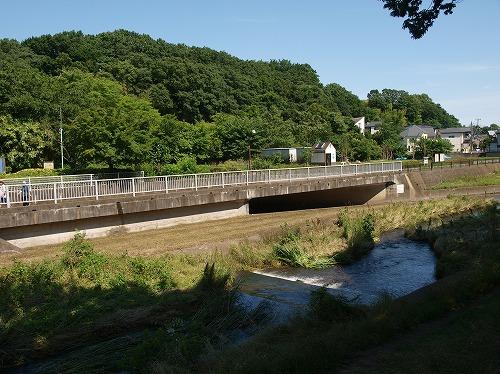 水車近く野川