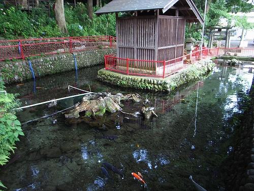 厳島神社裏