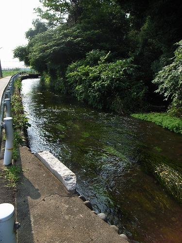 1滔々と流れる川