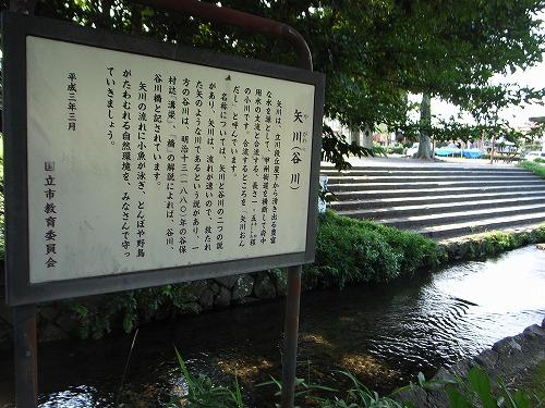 1矢川説明板