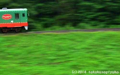 DSC_0918_01.jpg