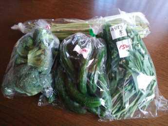 2014-4-28野菜