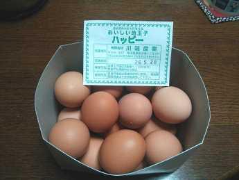 2014-5-15卵