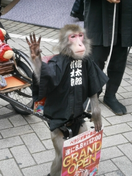 2014-8-9猿
