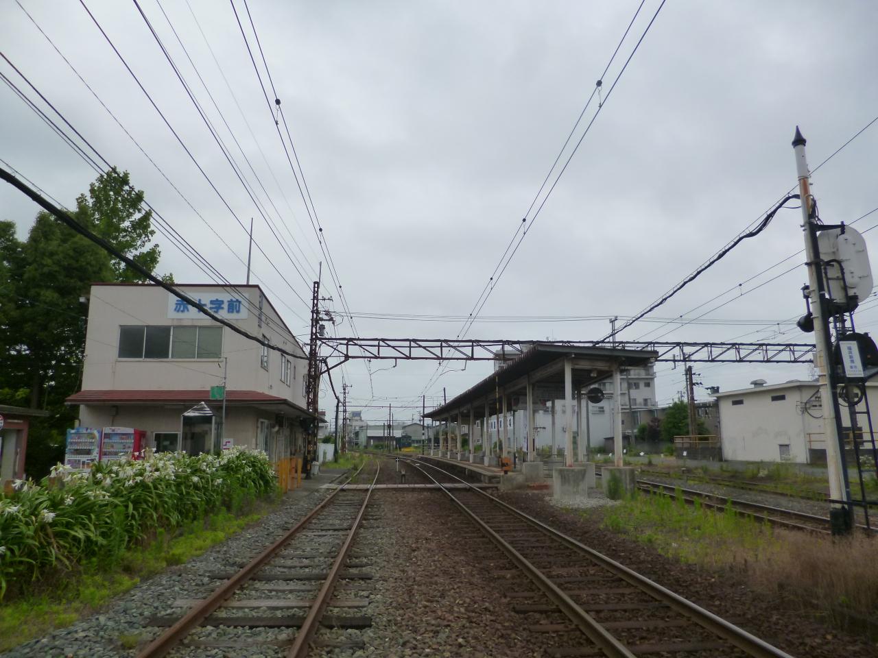 P1310120.jpg
