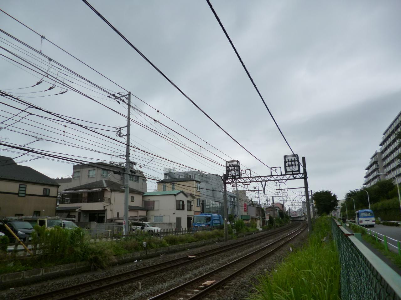 P1330540.jpg