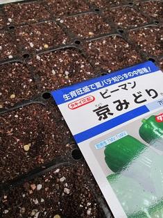 2014 02 001 - コピー