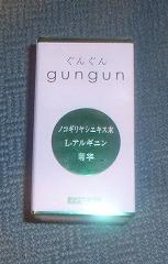 s-gungun01.jpg