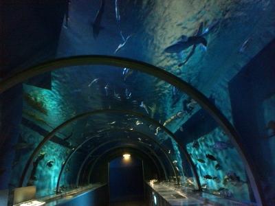 トンネル (400x300)