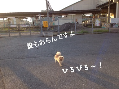 IMG_2813[1]