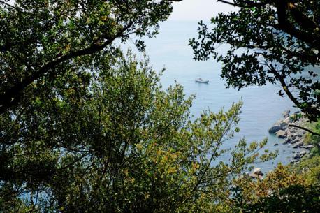 家島神社から海を望む