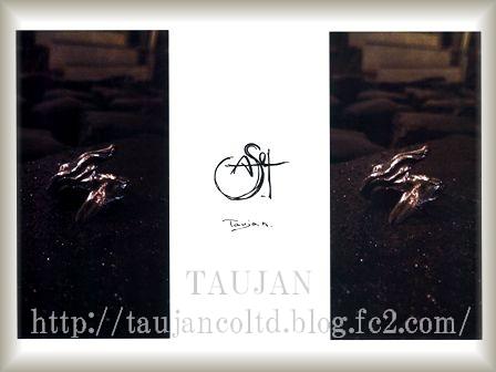 TAUJAN 新作 2014A/W サエタシリーズ