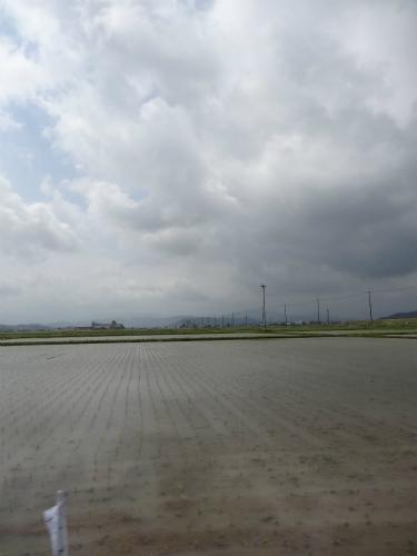 田圃の中に人工巣塔