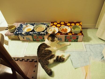 こんなに食べたら太っちゃう~