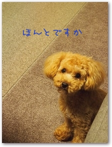 Teo 2014-08-01-02B