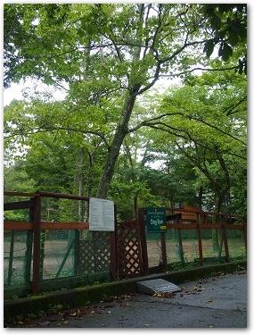 Teo 2014-09 Yamanakako (7)
