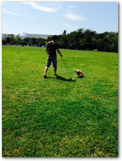 Teo 2014-09 Pinosuke (8)