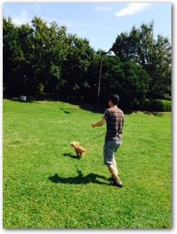Teo 2014-09 Pinosuke (9)