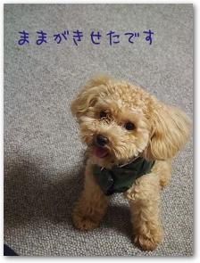 Blog_20140705_01