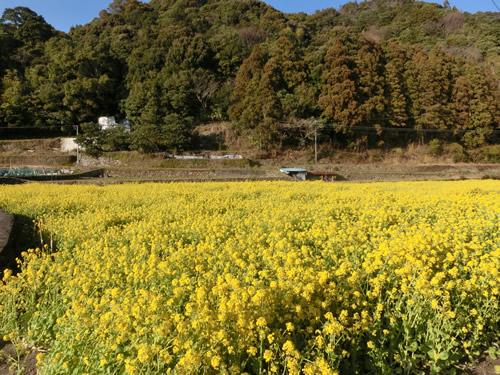 2014-03_20_04.jpg