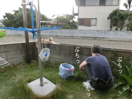 2014-07_23_05.jpg