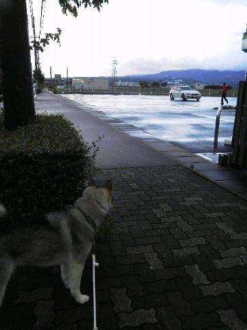 台風の朝1