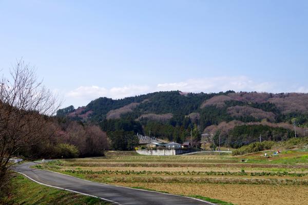 大平山01
