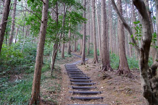 大平山06