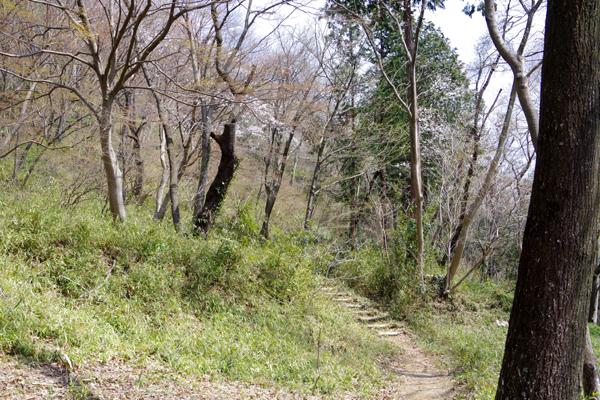 大平山16