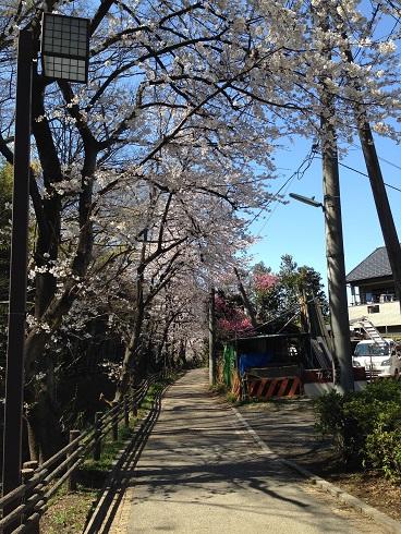 写真 2014-03-31 12 57 18