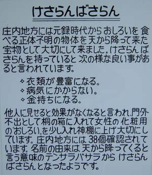 DSCF7788②ケサランパサラン