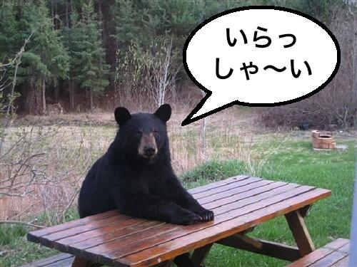 bear-table−2