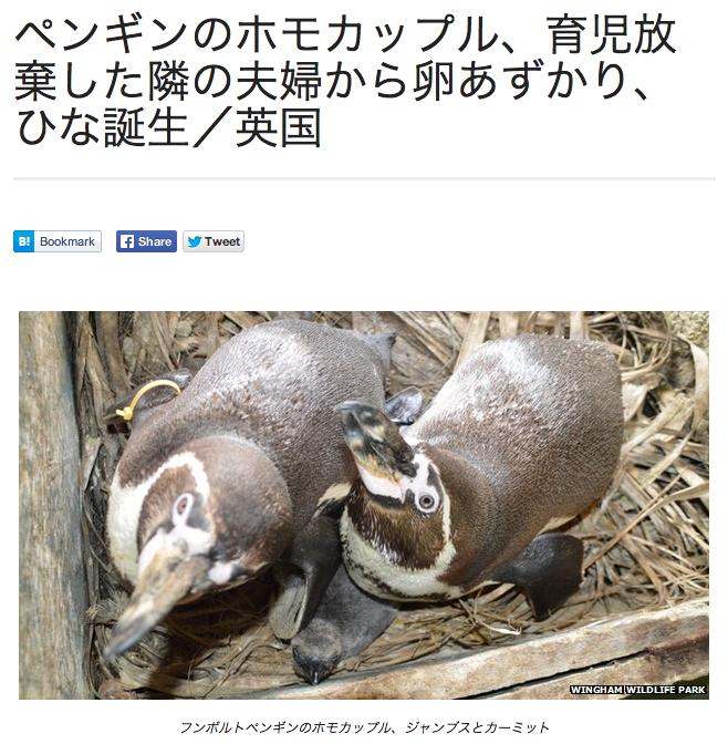 ペンギンホモカップル