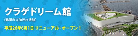 bn_kamo.jpg