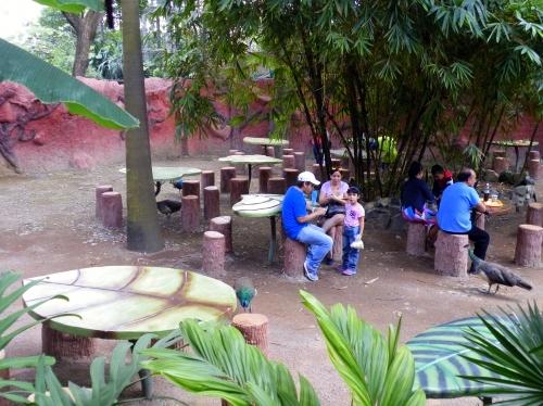 パンタナール動物園 休憩所