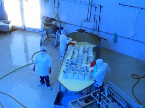 サリナス Salinas 乳製品工場