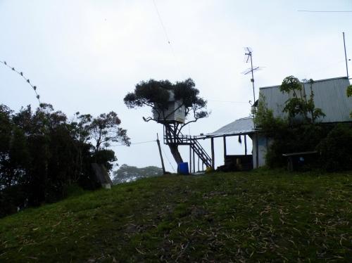 La casa del arbol ツリーハウス Swing at the end of the world リアルハイジ