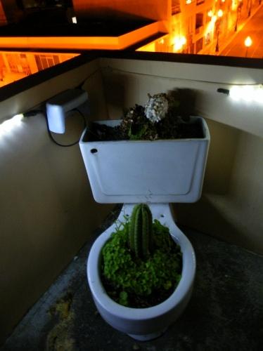 トイレのオブジェ