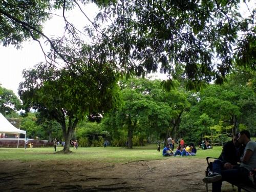 メデジン 森林公園