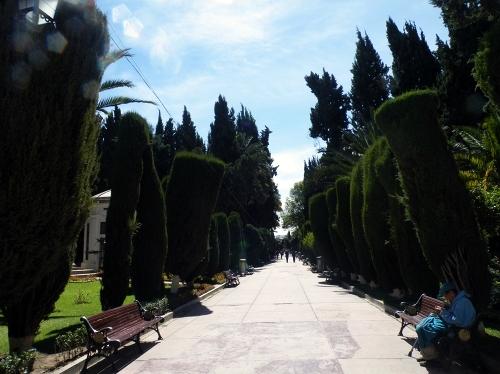お墓の通路