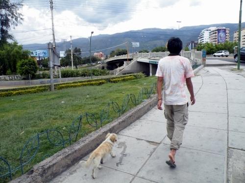 コチャバンバを犬と散歩