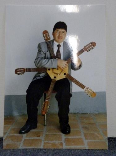 5又の弦楽器 弾く人