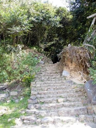滝 向かう 階段