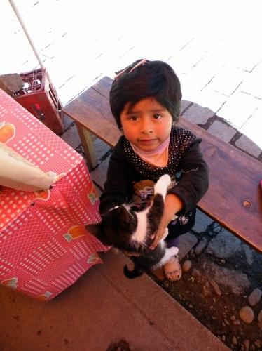 仔猫を持った 女の子