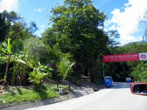 動物園までの道