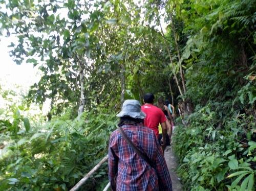 ジャングル 歩く