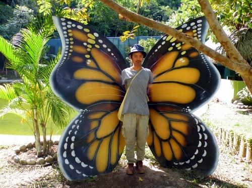 蝶々 おっ部ジェ