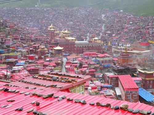 東チベット 五明佛学院 ラルンガルゴンパ