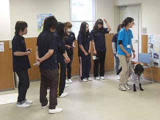 盲導犬(体験2)