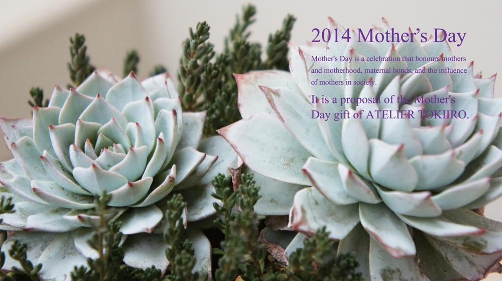 2014mothersday表001